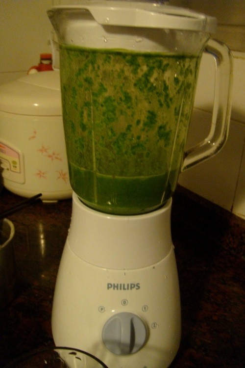 Making Green Monster: yogurt + steamed spinach and a revitalizing mix